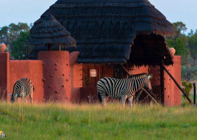 iKhaya LamaDube entrance