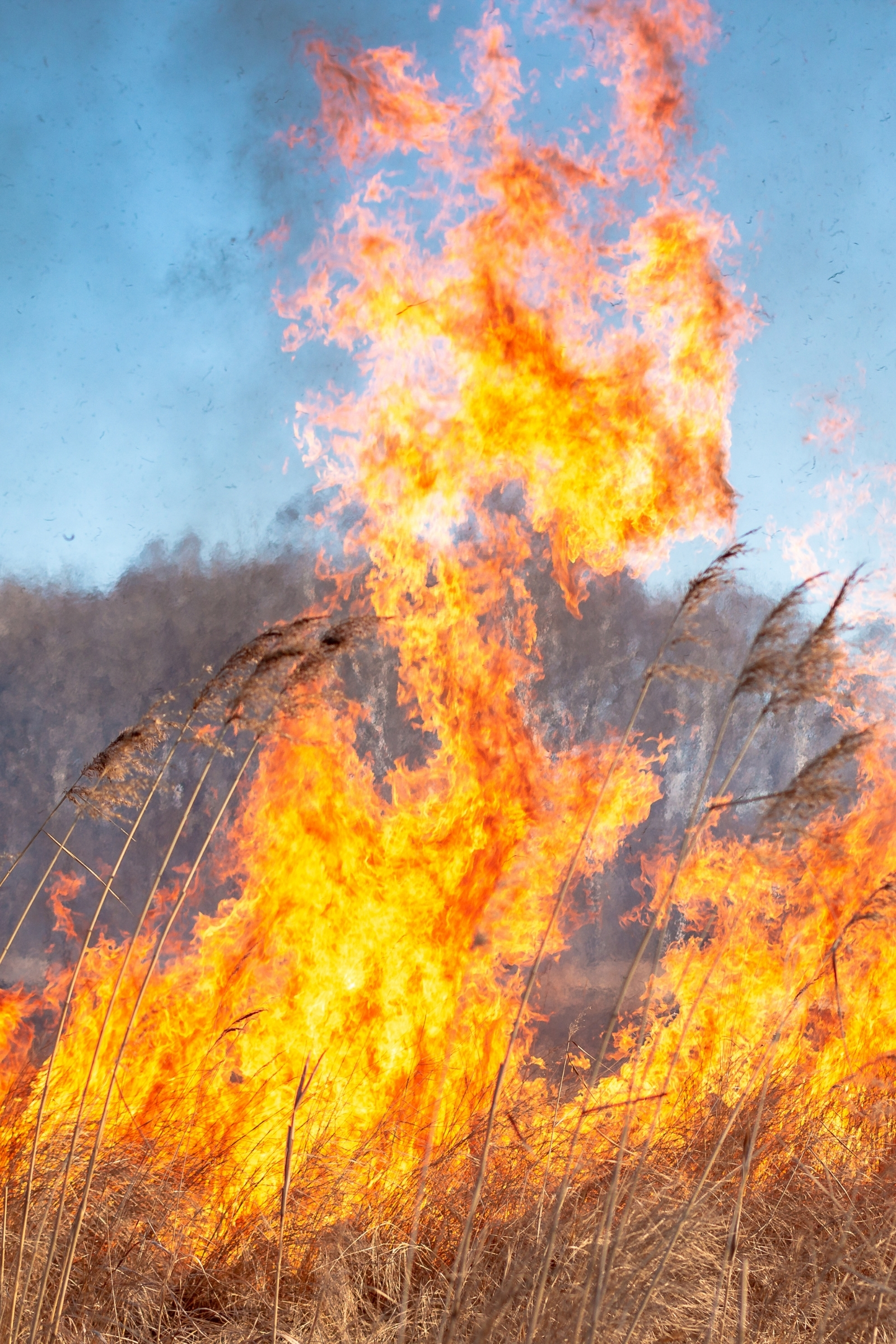 Fire safety in the bush
